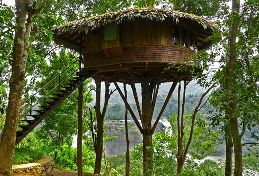 Thusharagiri Homestays & Resorts